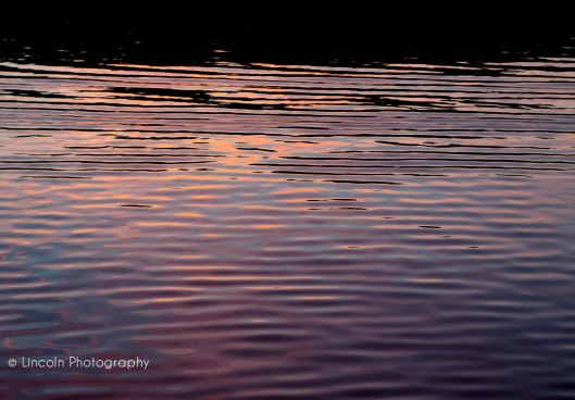 Watermark - Potomac Sunset Cruise-062