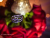 watermark-tineka-alex-wedding-003