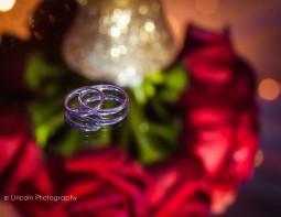 watermark-tineka-alex-wedding-003