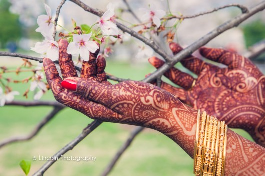 Watermarked - James & Priya Wedding - 003
