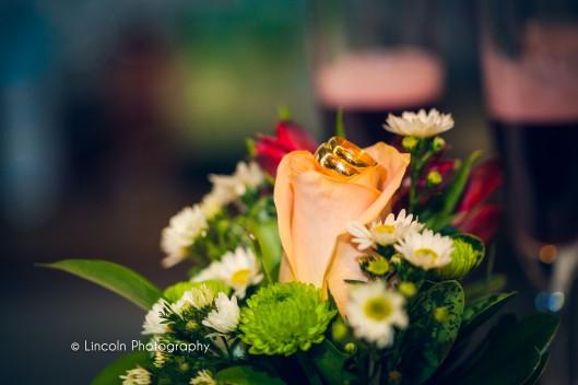 Watermarked - James & Priya Wedding - 012