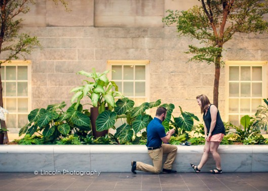 Lincoln Photography - Anthony & Hannah Proposal in DC - 002
