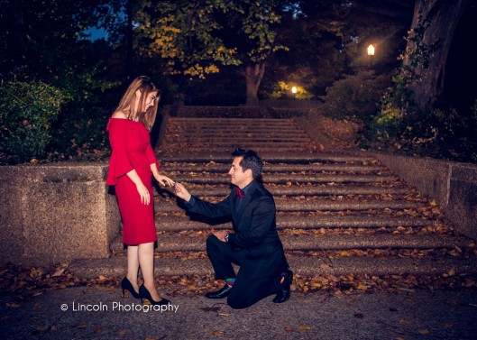 Lincoln Photography - Zohal & Omar Proposal - 003