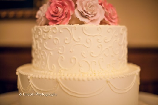 Lincoln Photography - Gulmira & Dave Wedding - 018