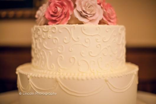 Lincoln Photography - Gulmira & Dave Wedding - 018