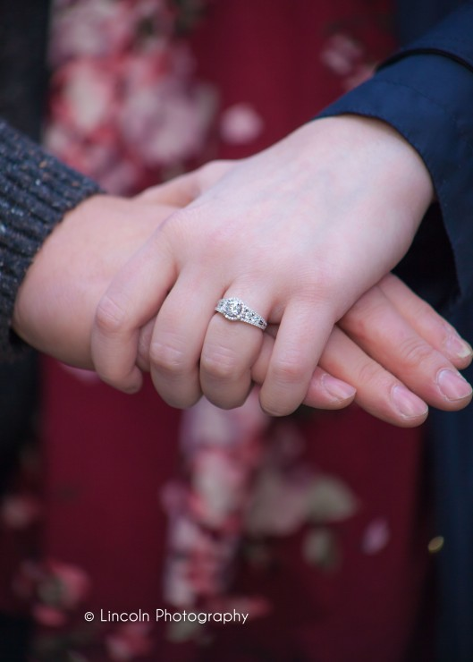 Lincoln Photography - Jessica & Brian Proposal - 012