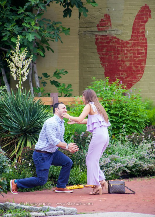 Lincoln Photography - Zach & Victoria Proposal - 005