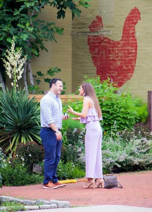 Lincoln Photography - Zach & Victoria Proposal - 008